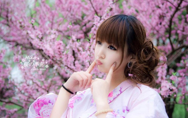 樱花下的小美女你爱?
