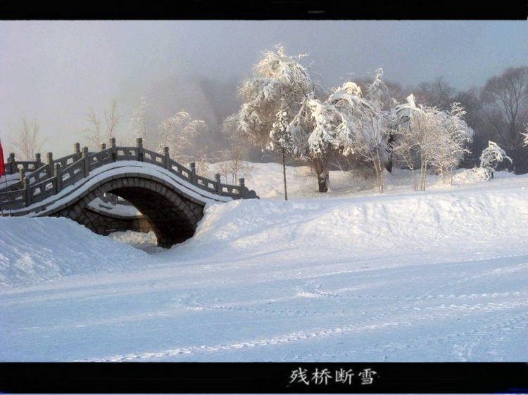 西湖十景之断桥残雪 ② - 海阔山遥 - .图片