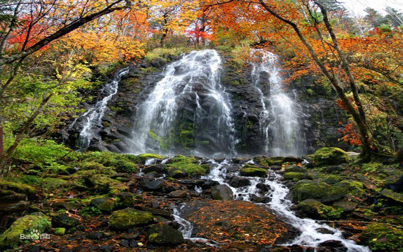 吉林白山原麝国家级自然保护区