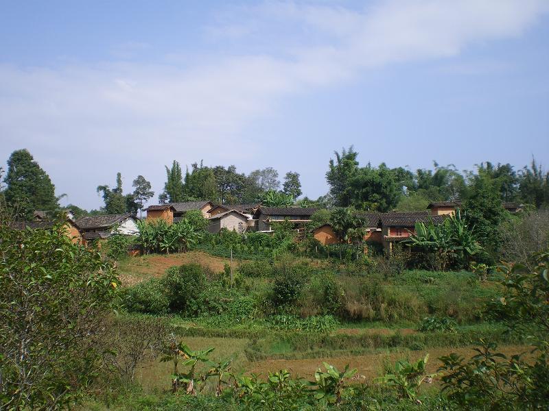 坝子丫口村图片