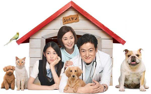 《兽医先生有事件啦》是日本电视剧.日本搞笑漫改电视剧图片