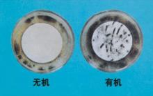 无菌及苔藓滋生2