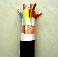 變頻器專用電纜