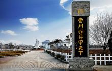 曹州牡丹园景点