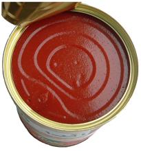 各种番茄酱美图