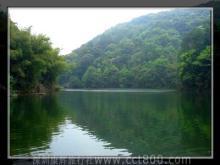 桂山原始森林风景区风光