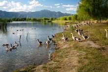 昆明野鸭湖度假区