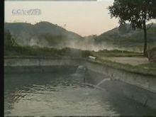 养鳖场的温泉