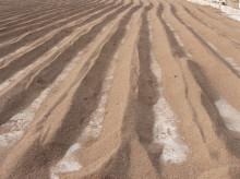 不同种类的有机肥原料