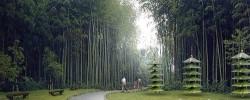 嘉州绿心公园