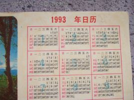 1993年日历图片