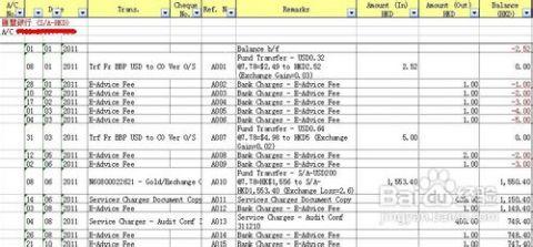 出纳日常流水账表格_香港公司会计报表如何制作成香港公司会计账