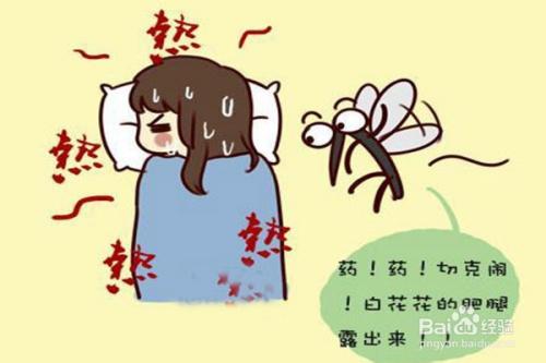 什么样的人容易被蚊子咬?蚊子喜欢什么血型?图片