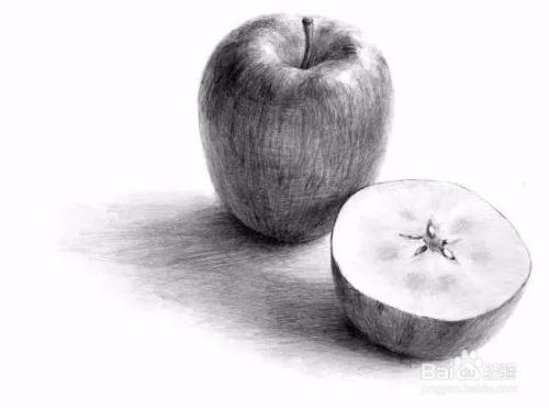 6  如果把苹果横切开的话,就会发现断面上有一个很明显的五角形,有趣图片