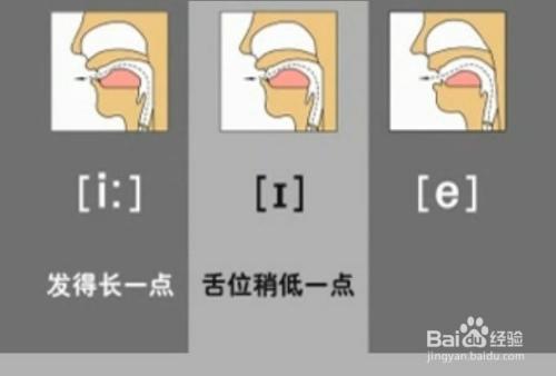 e/英式发音符号 /e/传统的国际音标的读音符号 该音是个前元音,是图片