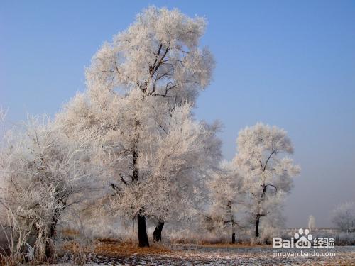 吉林省吉林市旅游景点