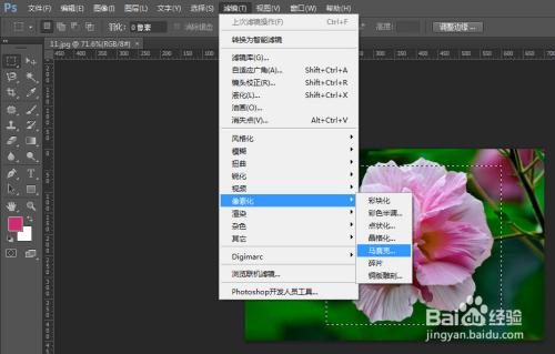 【打开】) 2 通过 矩形选框工具 选择区域(如果希望整个图片马赛克化
