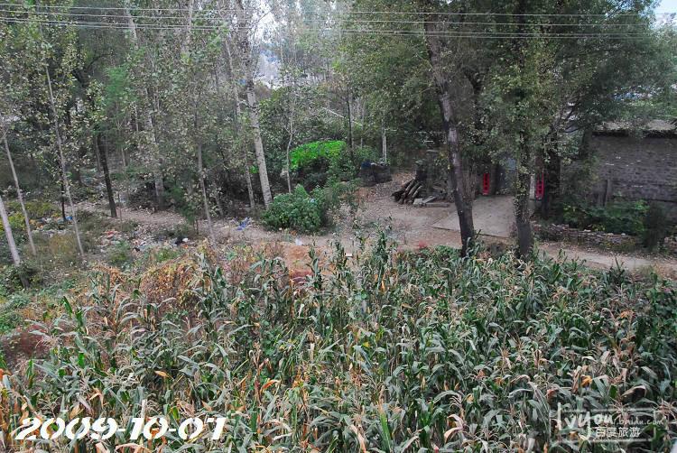 塞罕坝旅游攻略图片129