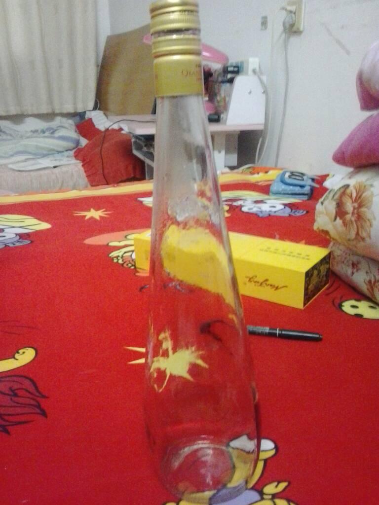 做法详细的说出来,并简单 95 2008-07-29 矿泉水瓶子能做什么小制作?图片