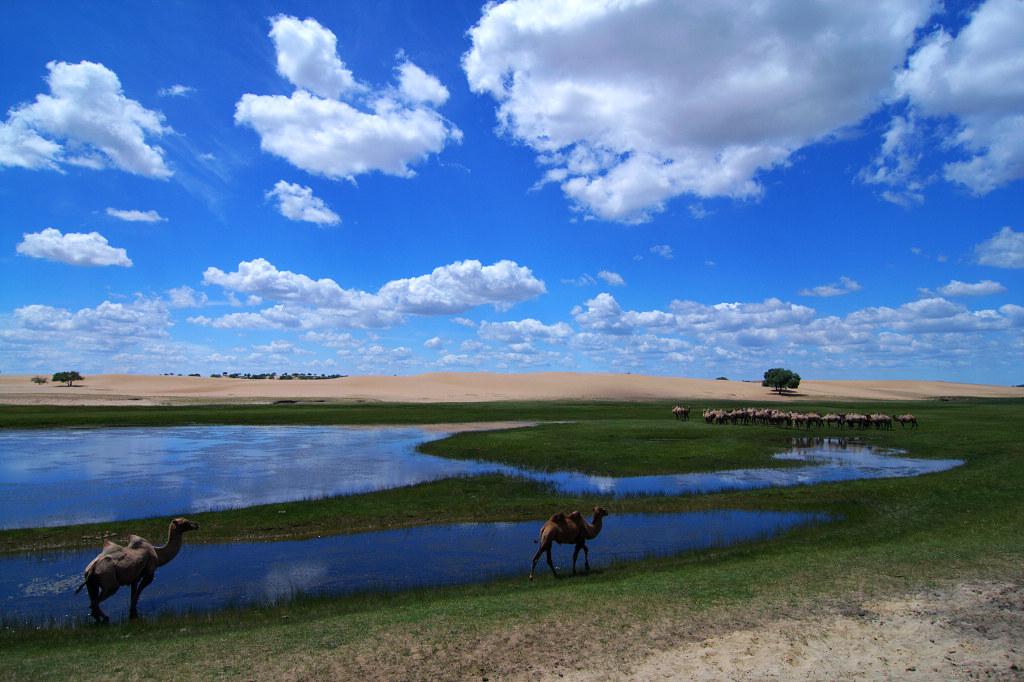 北京内蒙古自驾游