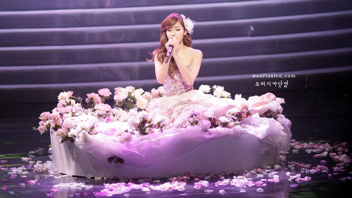 郑秀妍写真背景是玫瑰花