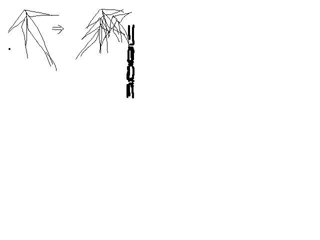我想用铅笔画竹子,怎么画,主要是叶子怎么画图片