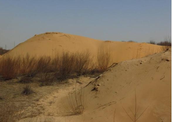 我国荒漠化最严重地区