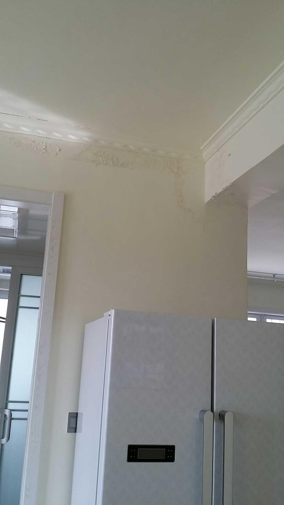 我家楼上漏水墙面掉皮发霉怎么办?石膏线都快掉了!图片