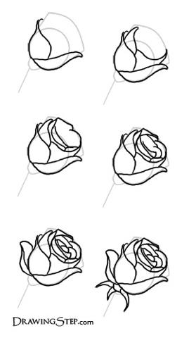 简单的玫瑰花怎么画 百度知道