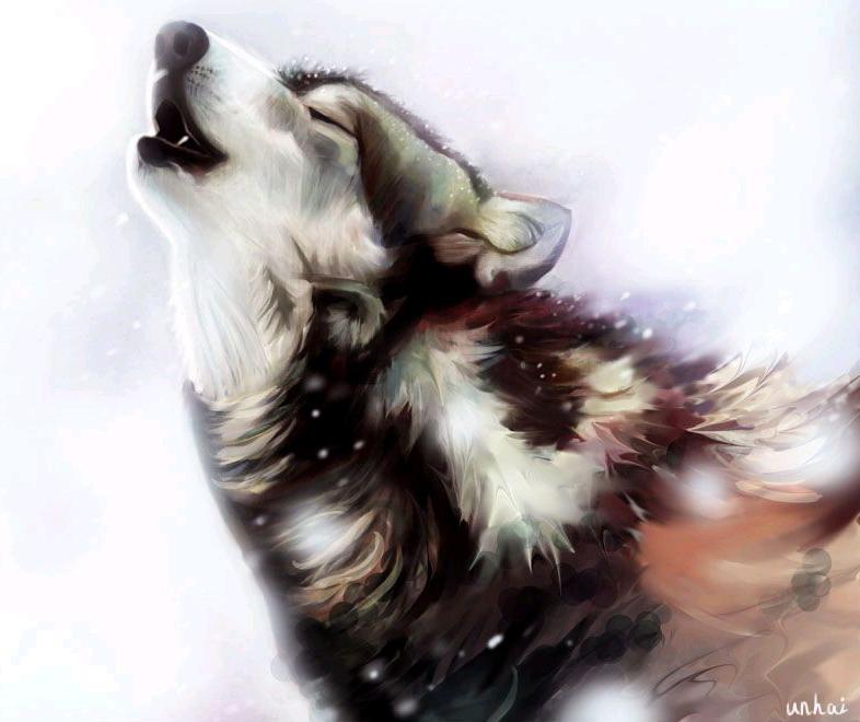 狼的情侣头像