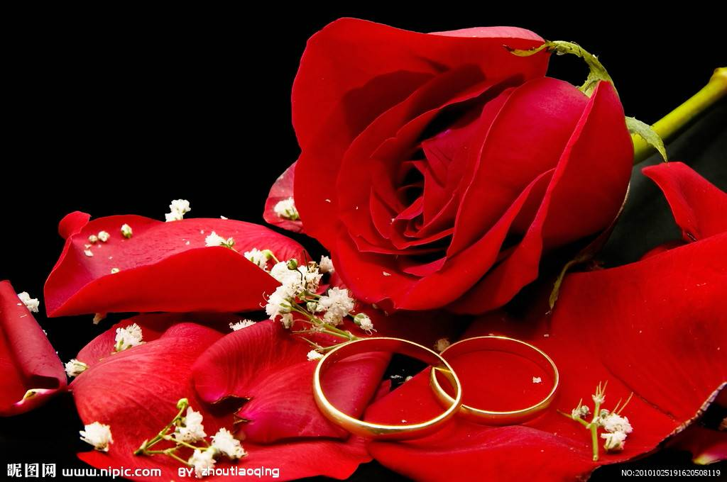 追答: 追问: 是钻戒哦 追答: 追问: 形状是玫瑰花形的 追答