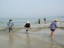 形容渔民打鱼的成语