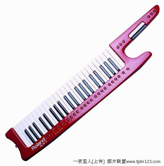 单排键式电子琴图片