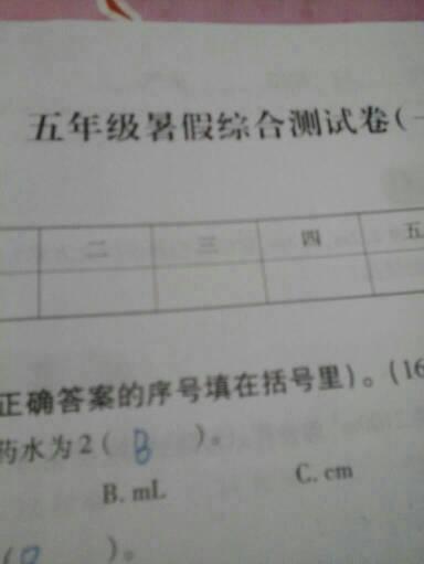快乐暑假的答案五年级下册 五年级下册快乐暑假 五年级下册数学答案