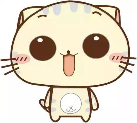 有谁有这种大的cc猫表情吗图片