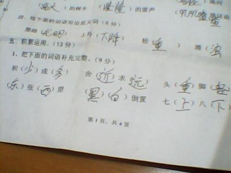 三年级下册语文,数学,英语期中试卷答案图片