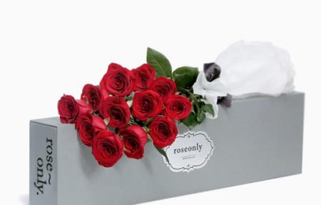 你可以到7月17日看小时代3开始上映,有roseonly玫瑰图片