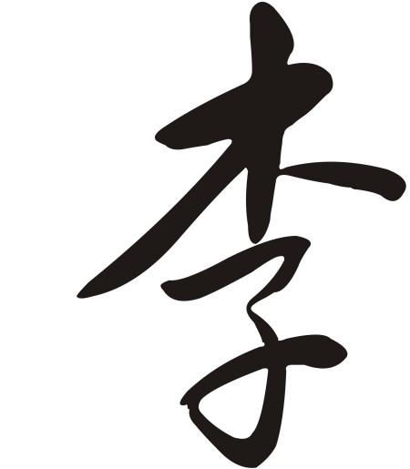 李字的草字是这样写的么图片