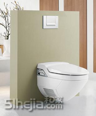 马桶安装后是不能移动的,而且下水方式必须是墙排.墙里边要高清图片