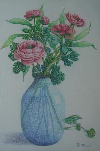 玫瑰花 素描图片