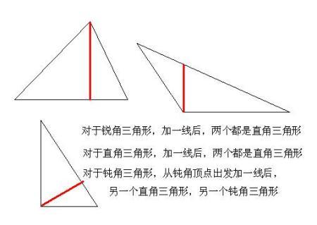 给一个锐角三角形加一条线段成为一个直角三角形和一个钝角三角形图片