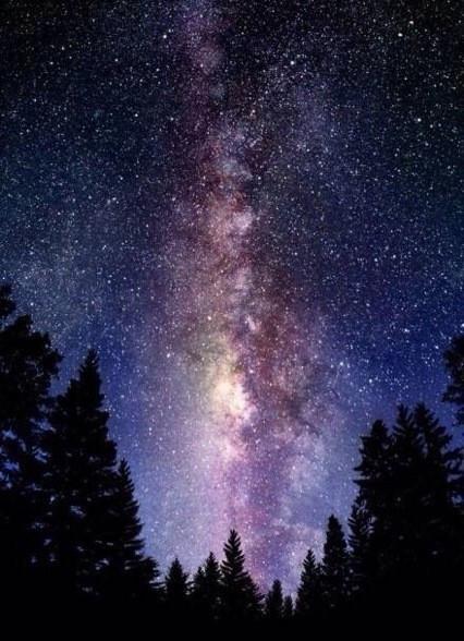 谁有一张有树林的,中间一条小路,上面是蓝紫色星空,很