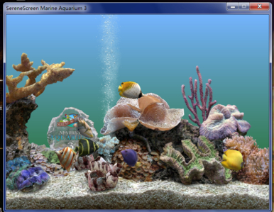 电脑屏保海底世界图片