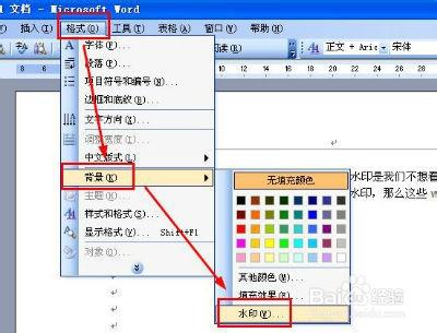 word2003水印怎么去掉图片
