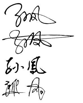 可以帮我写个艺术签名吗?我的名字叫孙凤谢谢图片