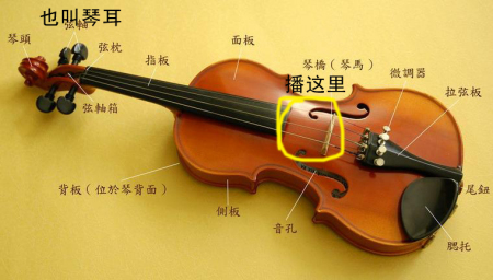 小提琴有四根琴弦,从细到粗就是从高到低音,你在调音器上找到对应的音图片
