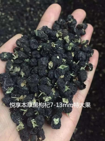 黑枸杞价格多少钱一斤