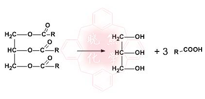 004 = 890 g/mol 由结构式计算饱和脂肪酸甘油酯的摩尔质量 173 3*图片