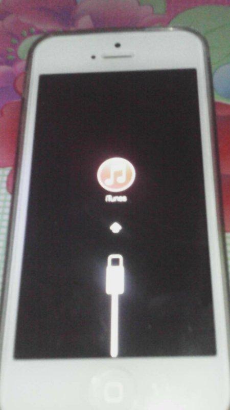 我的苹果5手机按设置更新了卡机出音乐图标和充电器怎么办开不开机了
