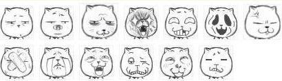 因表情看起来很猥琐,故名猥琐猫;图片